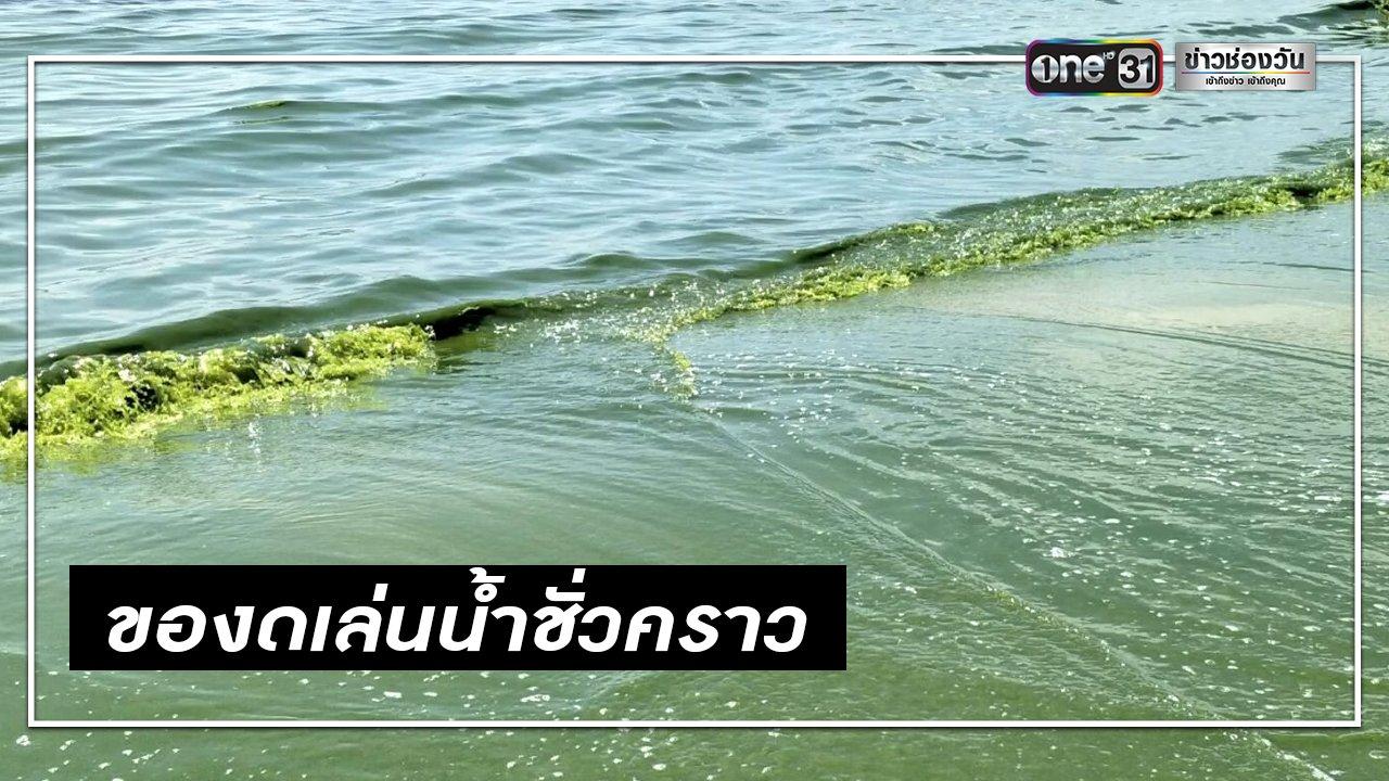 หาดวนกร น้ำทะเลเป็นสีเขียว อุทยานฯ ของดเล่นน้ำ 3 วัน